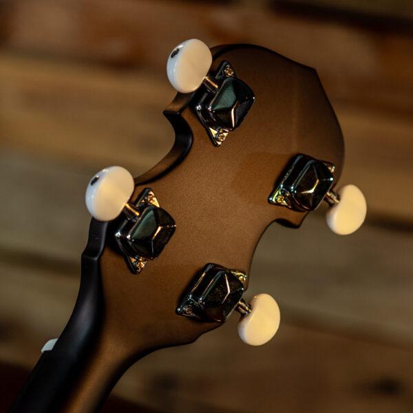 back of banjo headstock