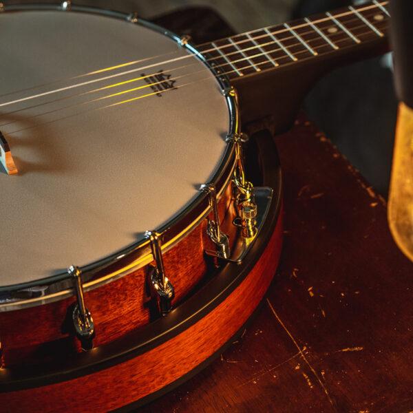 closeup of body of banjo