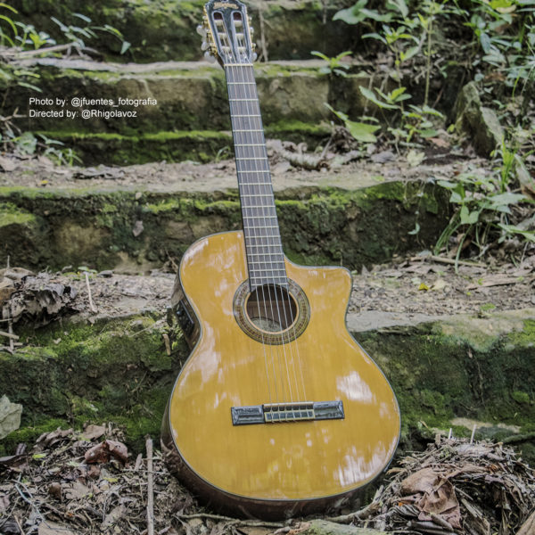 Washburn acoustic guitar on outdoor steps