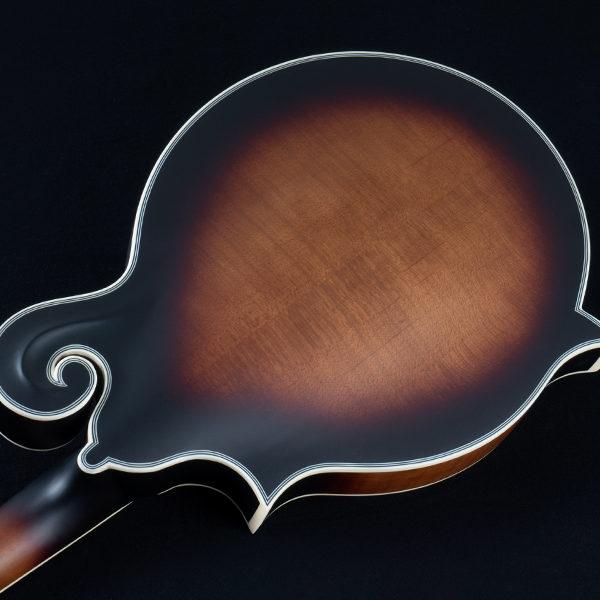 back of body of Washburn mandolin