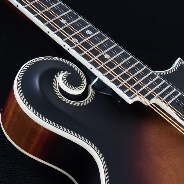bottom of neck on Washburn mandolin