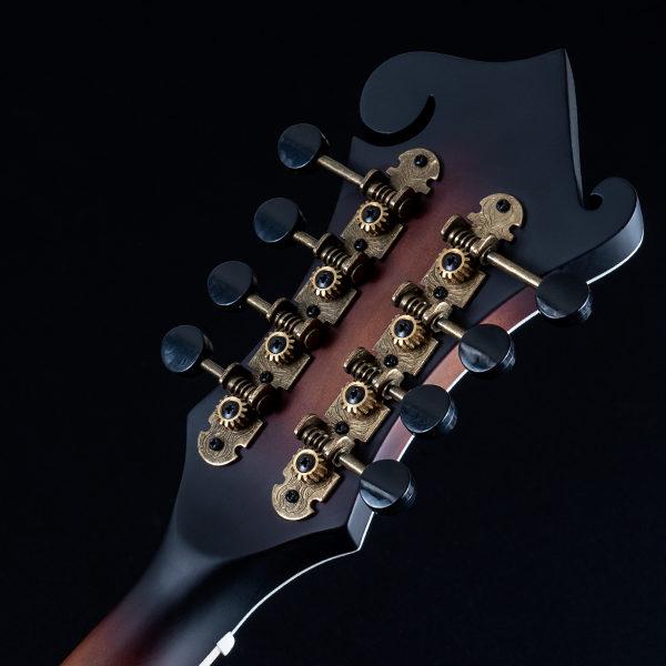 back of Washburn mandolin headstock