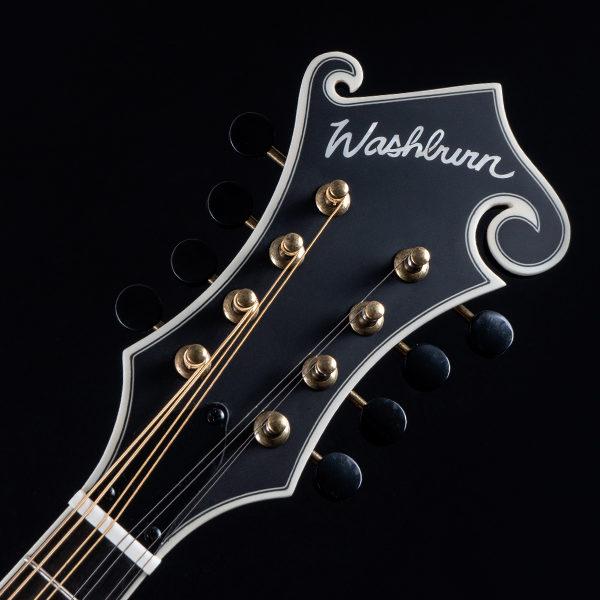 Washburn mandolin headstock