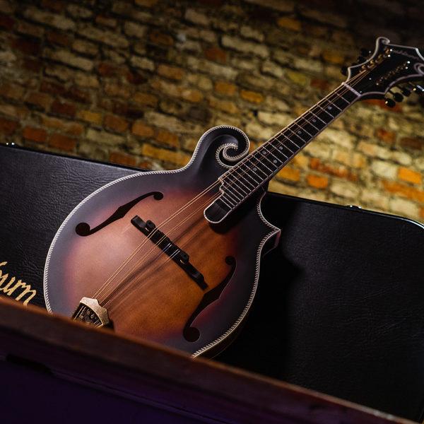 Washburn mandolin leaning on Washburn case