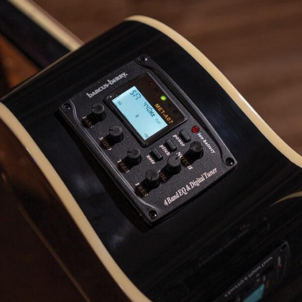closeup of controls on Washburn guitar