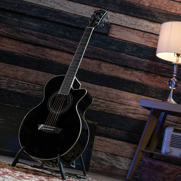 back acoustic guitar on stand