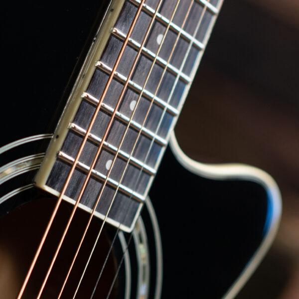 closeup of rosette on Washburn guitar