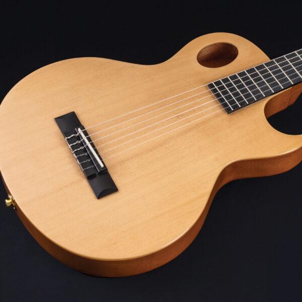 body of Washburn guitar