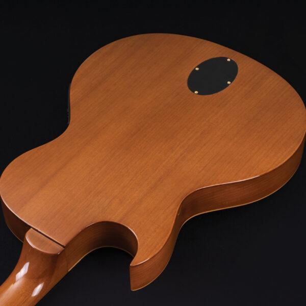 back of body of Washburn guitar