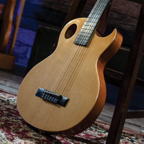 Washburn guitar body