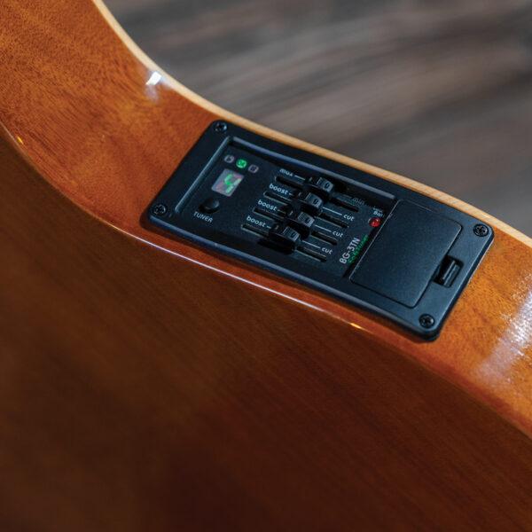 closeup of controls on guitar