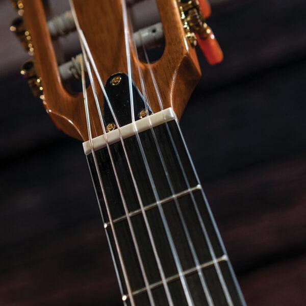 closeup of guitar neck and headstock