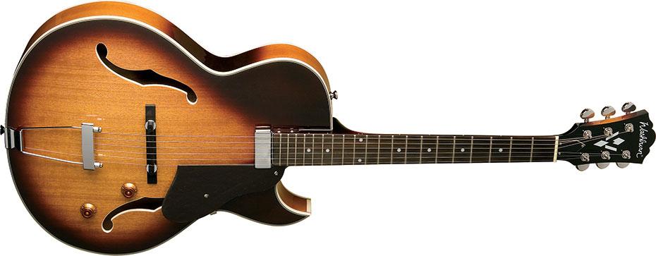 Washburn Lyon Electric Guitar Wiring Diagram on