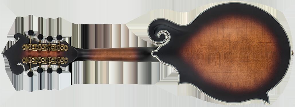 back of Washburn mandolin