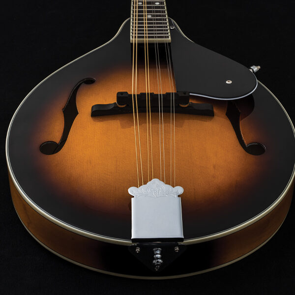 body of mandolin