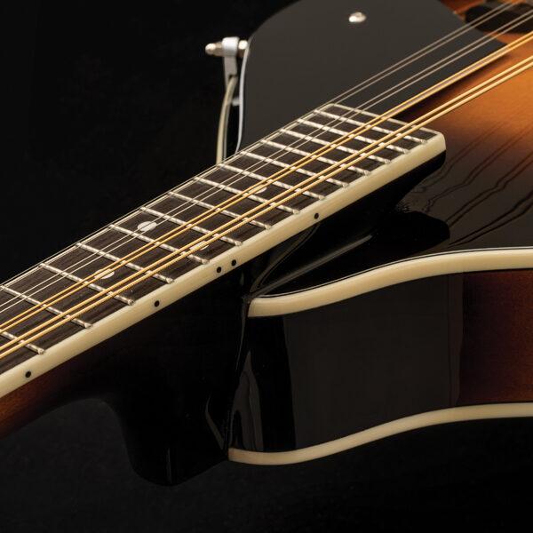 closeup of neck of mandolin