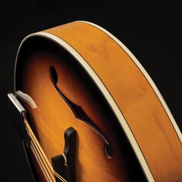 closeup of mandolin body