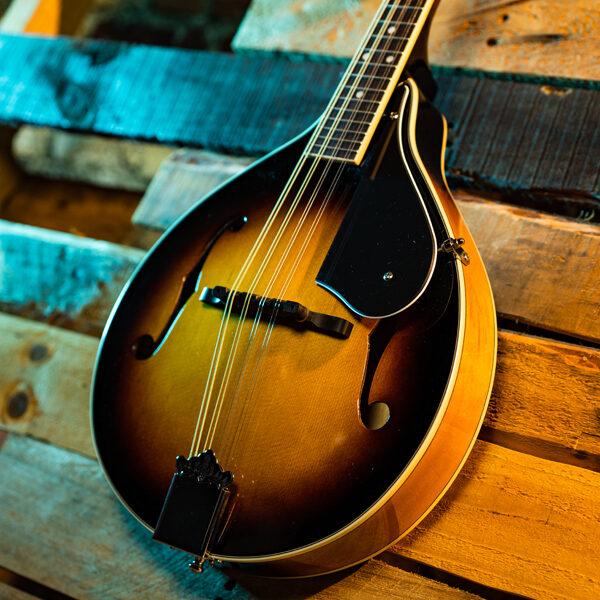 body of mandolin with wood panel background
