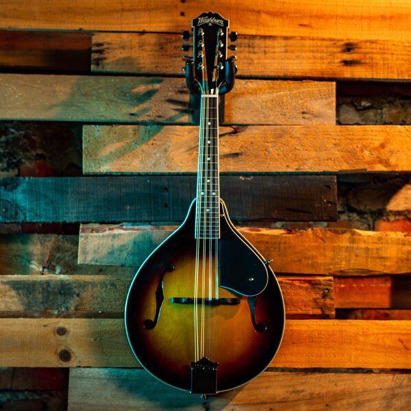 mandolin with wood panel background