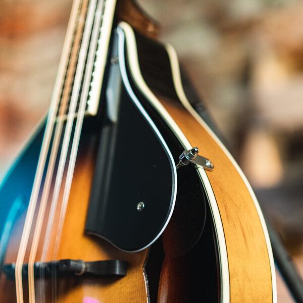 closeup of mandolin