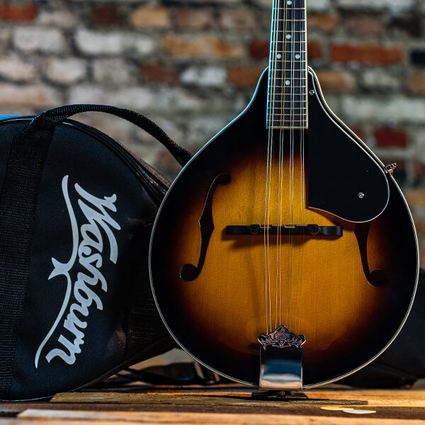 body of mandolin beside gig bag