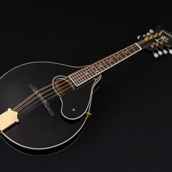 black mandolin