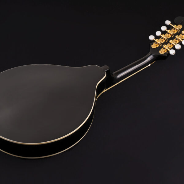back of black mandolin