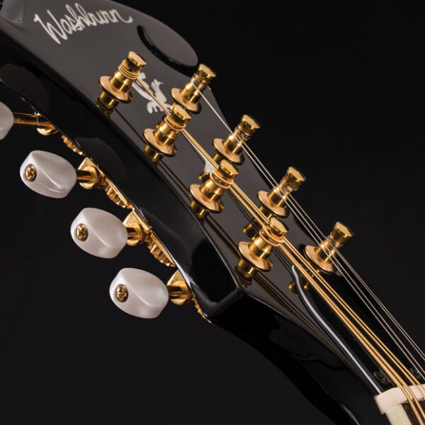 closeup of mandolin headstock