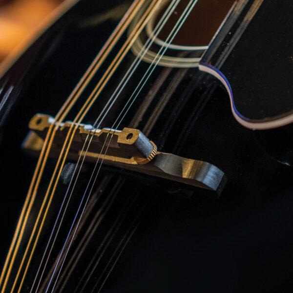 closeup of string on black mandolin