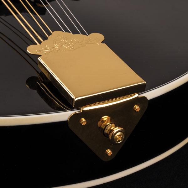 bottom of Washburn mandolin body