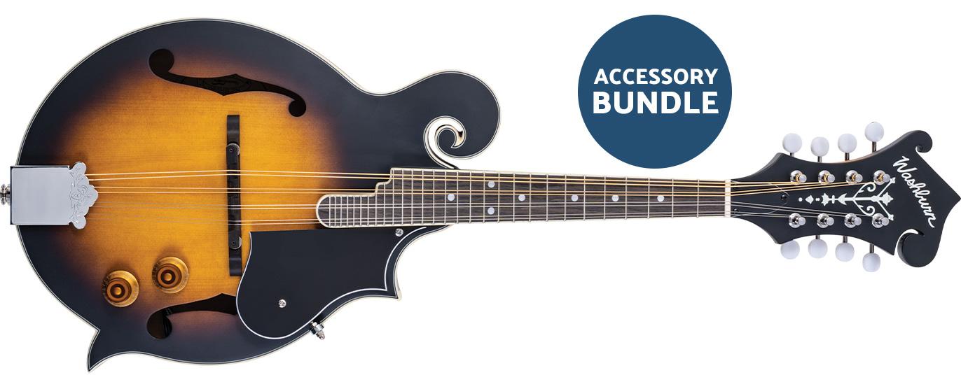 Washburn mandolin