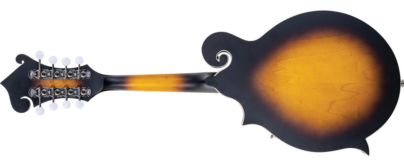 back of mandolin