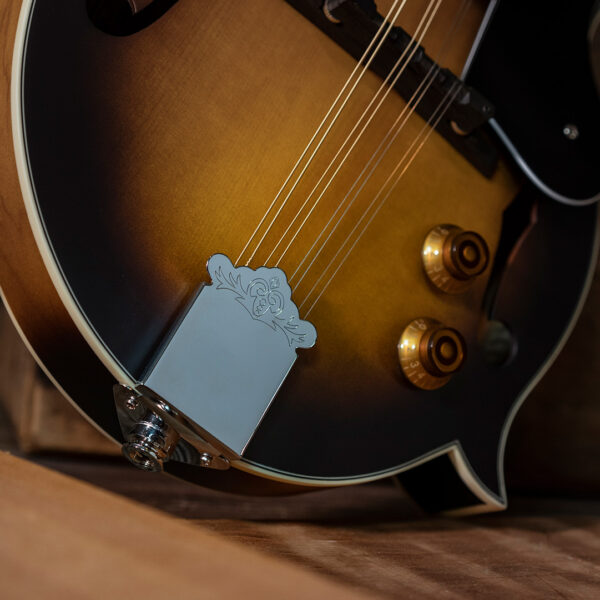 partial view of body of mandolin