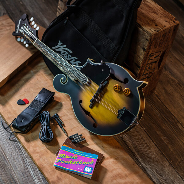 mandolin with gig bag and accessories