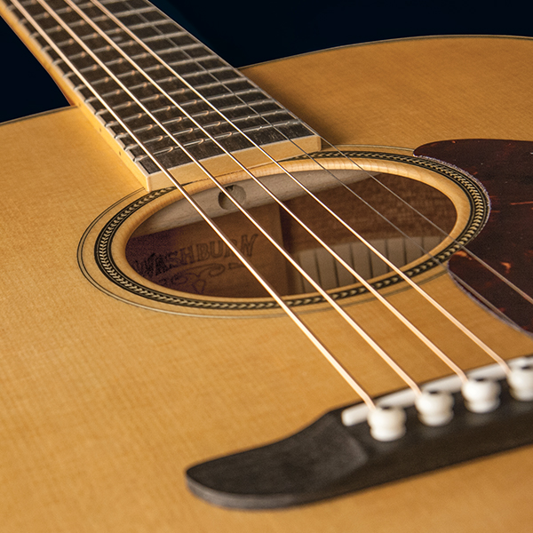 closeup of rosette on Washburn acoustic guitar