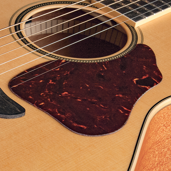 closeup of pick guard on Washburn acoustic guitar