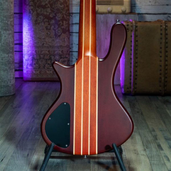 back of Washburn electric guitar on stage