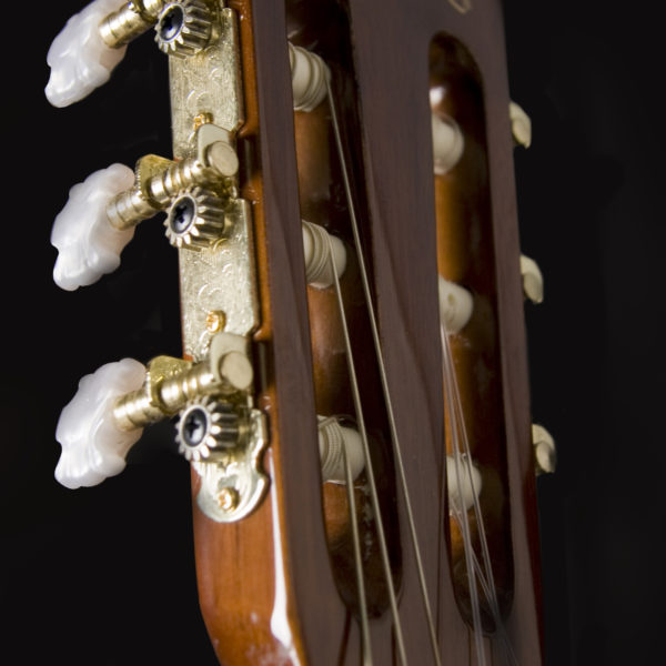 C5 CLASSICAL GUITAR HEAD STOCK