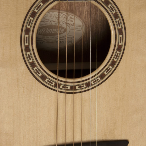 WD7S Harvest D7S close up of the sound hole, roseette and bridge