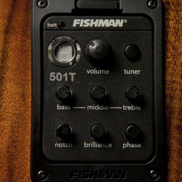 closeup of Fishman electronics on Washburn acoustic electric guitar