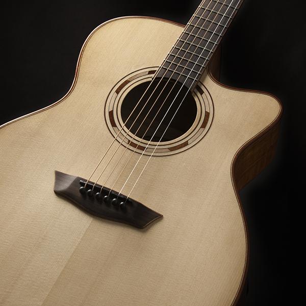 closeup of body of Washburn guitar