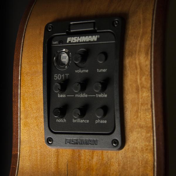 closeup of Fishman electronics on Washburn acoustic electric guitar