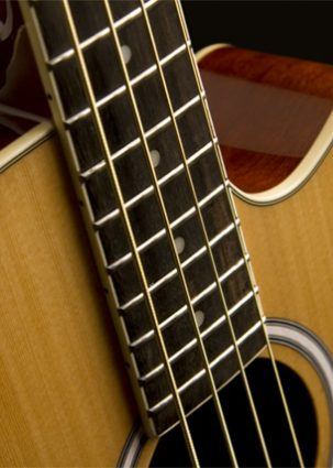 ACOUSTIC BASS SERIES IMAGE