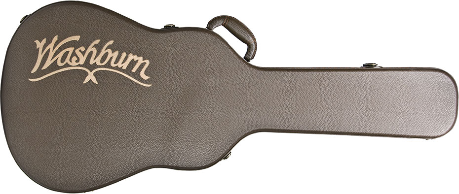 GCNDLX guitar case