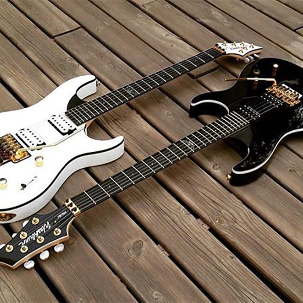 WHITE AND BLACK DAVID PALAU SIGNATURE PARALLAXE GUITARS