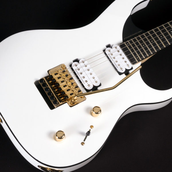 angled view of front of PXM-DP10WH parallaxe david palau signature model M10FR