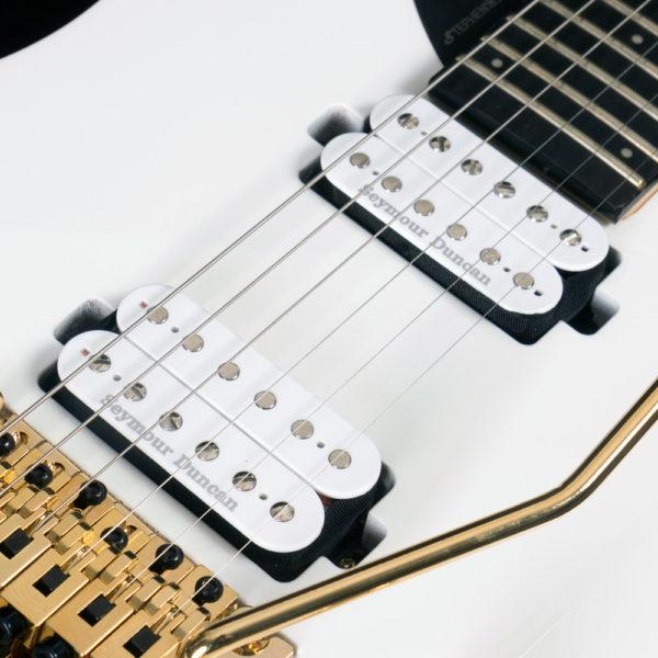 close up of parallaxe david palau signature model M10FR pickups