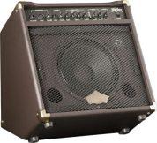 WA30 guitar amplifier