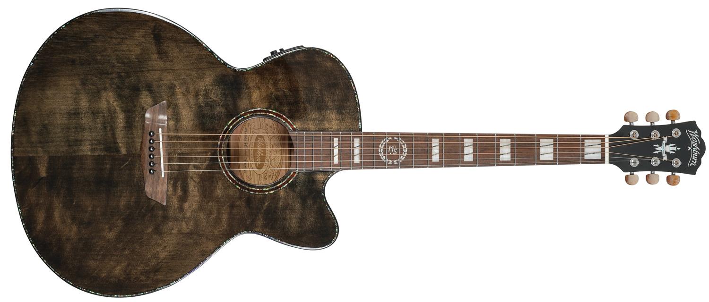 Michael Sweet J40SCE Signature Washburn Guitar