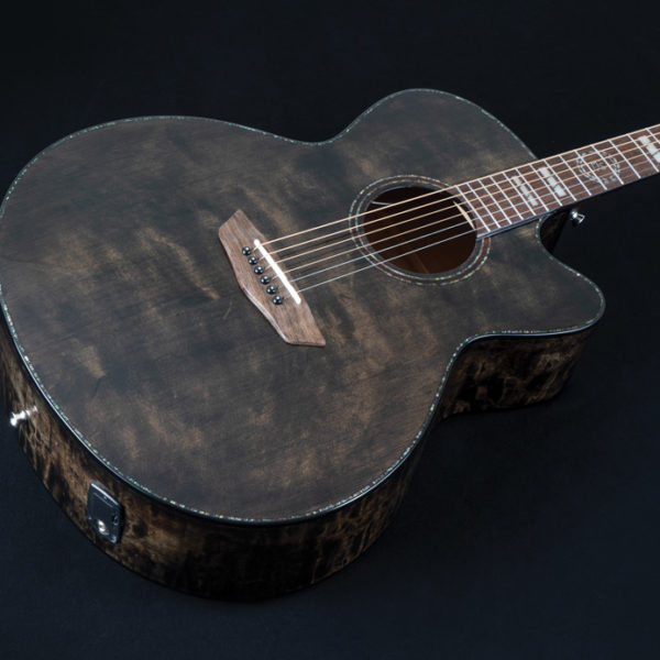 front of Washburn acoustic guitar